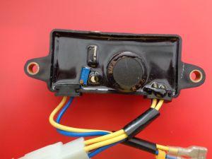 2kw AVR für Set-Qualität des Generator-Ec2500