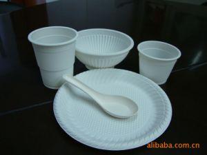 De chemisch afbreekbare Plastic Container die van het Voedsel Machine maken