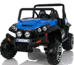 2 de Elektrische Rit van het Elektrische 24V Kind van de Auto Seater op Speelgoed met RC met het Facultatieve Schilderen van de Nevel