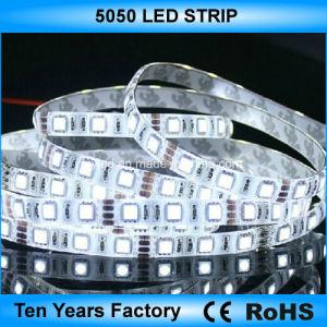 indicatore luminoso di striscia flessibile di bianco LED di 12V SMD 5050