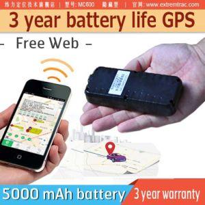 Batería de larga duración de 3 años coche GPS Tracker GPS Tracker Batería