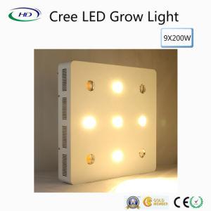 Chips CREE 9*200W levou crescer a luz para o crescimento do sistema hidrop ico