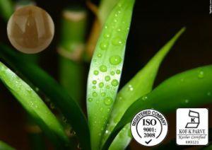 Extrato de folha de bambu com alimentos e a Aplicação Médica