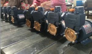 Selbstansaugende elektrische Wasser-Pumpe der Serien-PS-126