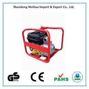 중국 Chongqing 3  세륨 GS와 EPA를 가진 펌프는 승인했다