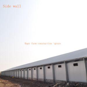 Galpão de Multiplicação exaustivos à estrutura de aço com equipamentos de produção