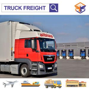 Agente de transporte profesional de camion de Shenzhen a Global Alemania