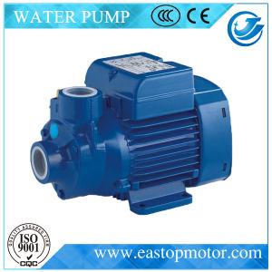 Castiron Body를 가진 Construction를 위한 Hqsm Pump Prime