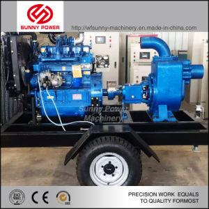 La aplicación de riego agrícola de la bomba de agua Diesel