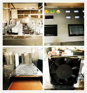 세륨 표준 새로운 상태 벨트 유형 전자 레인지