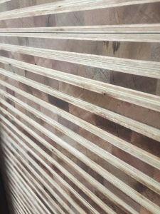 高い等級のBlockboardのユーカリかポプラのコア自然な木製の表面