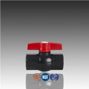 Valvola a sfera filettata PVC della plastica di BACCANO Pn10 BSPT