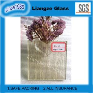 Hyaline Kunst Getelegrafeerde Decoratie van het Glas met Stof voor de Bouw