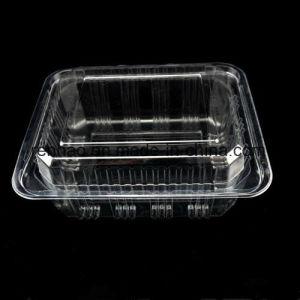 食糧パッキング容器のフルーツボックス小売りのプラスチック包装のまめのクラムシェルボックス