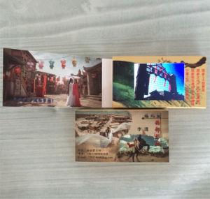 Piccola scheda della video visualizzazione dell'affissione a cristalli liquidi di Digitahi un riproduttore video da 2.4 pollici