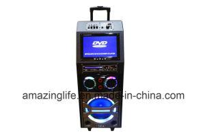 Haupttheater 12 Zoll Bluetooth beweglicher Lautsprecher mit DVD-Spieler