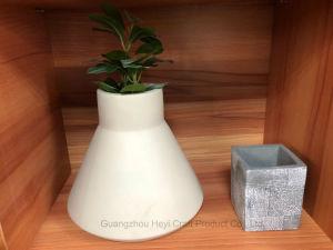 Suculento cultivadas Pot Home Jardim decoração (GZHY-FP-005)