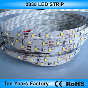 12V impermeabilizzano la striscia flessibile di SMD 2835 LED