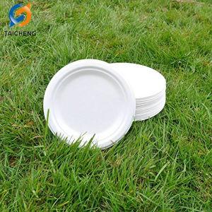 100 % compostable et biodégradable, 9 10  Les plaques de bagasse de canne à sucre à usage unique