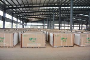 9,5Mm Partição de tecto e de parede de gesso de fibra de vidro (G14)