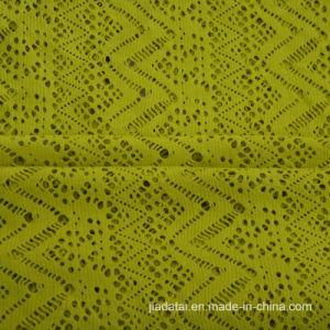 ジャカード網の伸縮性がある水着の空の質ファブリック