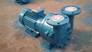 Sk-0.15 verweisen Wasser-Ring-Vakuumpumpe