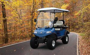 Hdk Electric carrinho de golfe no subúrbio de Praia Atlântica (DEL2022D2Z)
