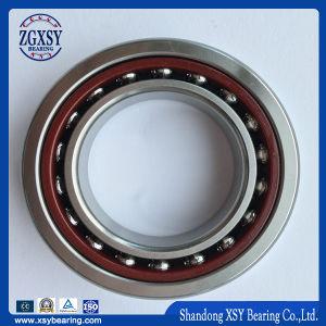Proveedor de oro Xsy Cojinete de bolas de contacto angular, 7300, un dúplex dB/DF/dt