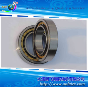NU1017M/32117H Cylindrical Roller Bearings 85*130*22 mm