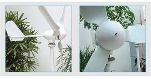 De horizontale Generator van de Macht van de Wind van de As 400W voor Huis