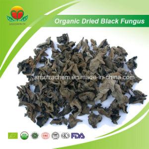 Lieferant-organischer getrockneter schwarzer Pilz