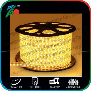 Indicatore luminoso di striscia impermeabile della decorazione SMD 2835 esterni LED di AC220V