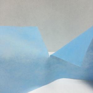 Prodotto non intessuto di Spunbond pp per la fabbricazione dei sacchetti