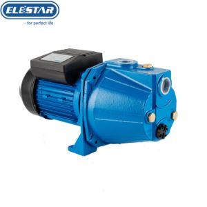 Selbstansaugende elektrische Wasser-Pumpe der Strahlen-Serien-1HP