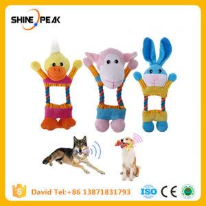 Cão de pelúcia brinquedos engraçado a oco som interactivo Squeak Chew Toy mercadorias para os animais de estimação Cachorrinho Cat Produtos para cães