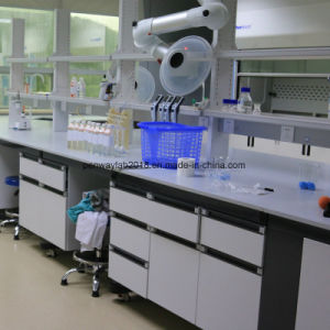 鋼鉄および木製の化学抵抗力がある学校の実験室の家具