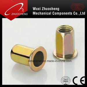Plaqué zinc vis à tête fraisée à tête plate de l'écrou de rivet