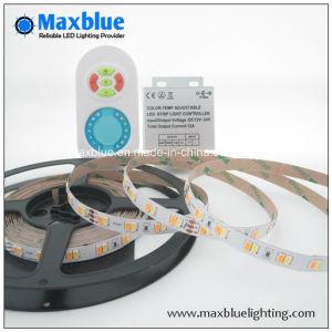 Samsung 5630 il TDC Adjustable Flexible LED Strip Light con Controller