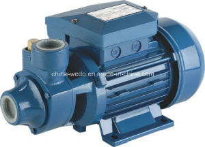 Clean Water (0.37kw/0.5HP)のためのIdb35 Electric Water Pump 1inch Outlet