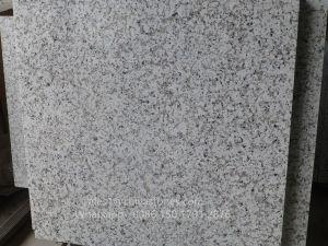 Bala poli blanc/flammé/perfectionné un revêtement de sol de Granite Tile/Wall Tile/paver tuile