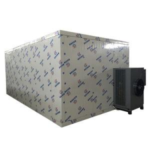 Armário com eficiência de secagem do secador uma variedade de frutas de produtos hortícolas de Marisco de carne
