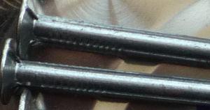 Pulido de alta calidad Motu ronda común cable de hierro de las uñas