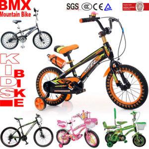 BMX 아이들 MTB 자전거 산 자전거가 산 자전거 운동에 의하여 농담을 한다