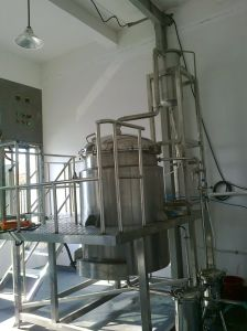 Sassafras Filtros de Aceite Esencial para la venta