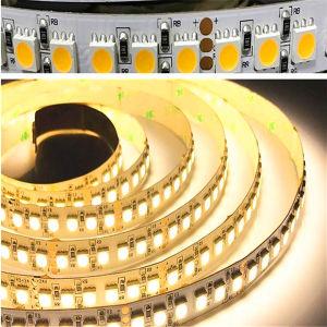 Nastro di colore SMD5050/3528 LED della fabbrica/indicatore luminoso di striscia ambrati all'ingrosso