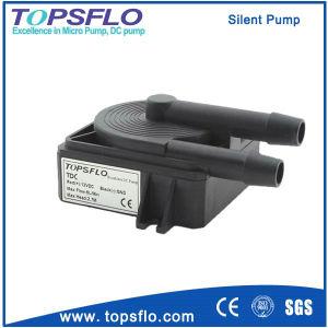 Pompa senza spazzola di CC/pompa di circolazione più fredda