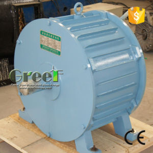 10kw 100rpm la generadora hidroeléctrica con tensión de Fase 3 AC 50Hz