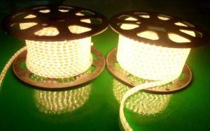 220V, de la cuerda de LED SMD5050, IP67, 60 LEDs/M