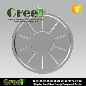 Disc Coreless générateur à aimant permanent axial de flux avec BV