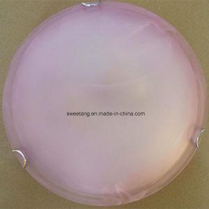 Het binnenlandse Licht van het Plafond om Stijl met de BinnenVerlichting van de Schaduw van het Glas